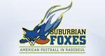 Suburbian-Foxes